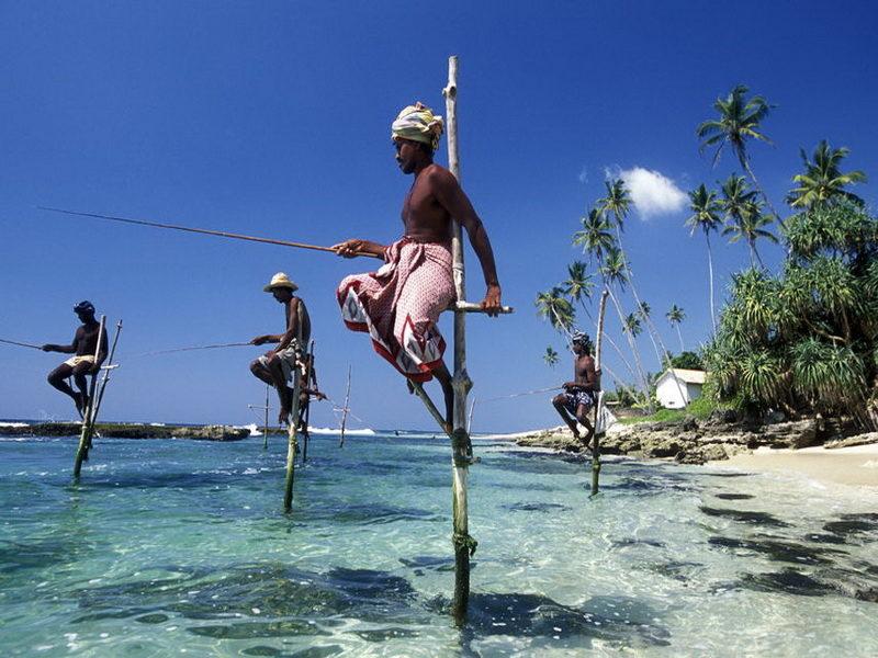 рыбаки на шестах Шри Ланка